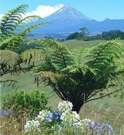 New Plymouth, Nowa Zelandia: 7572 ft Mount Taranaki and its lush dairyland.  