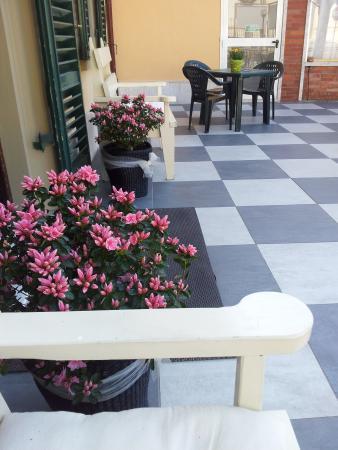 Hotel Butterfly : la terrazza!