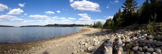 South Glenmore Park: Beautiful place in the park for reading my Kindle!:)