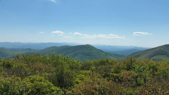 Elk Knob State Park: Summit of Elk Knob
