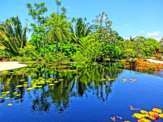 Yes you are in florida gators galore picture of - Botanical gardens naples florida ...