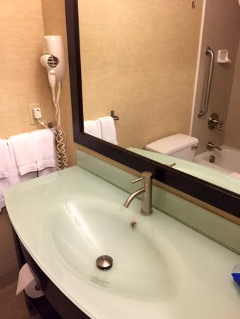 BEST WESTERN PLUS Portage Hotel & Suites: Bathroom