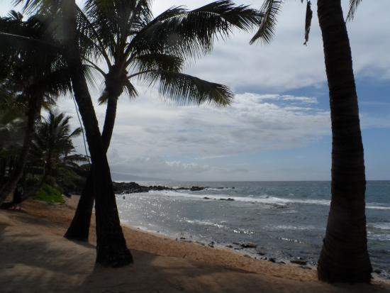 Paia, Hawaje: Beach view