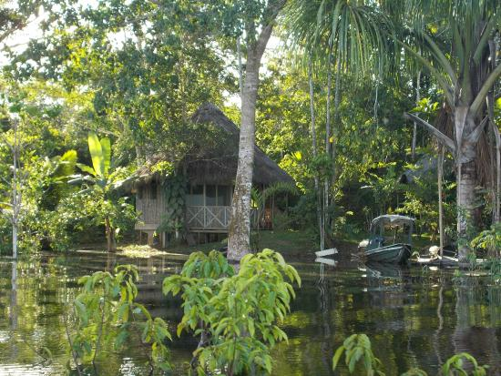 San Pedro Lodge from the boat on the Amazon
