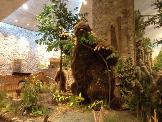 Mastodon State Historic Site : May 2015