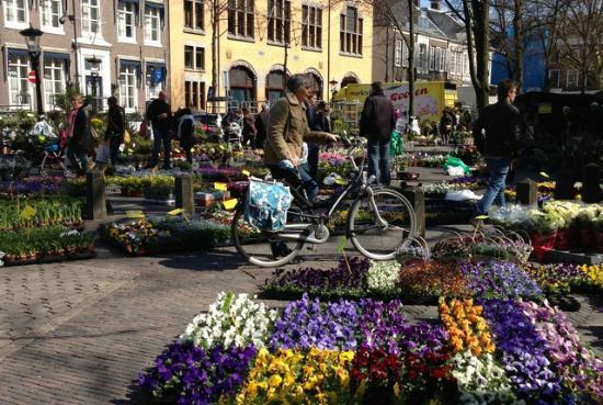Bloemenmarkt, Janskerkhof, Utrecht照片
