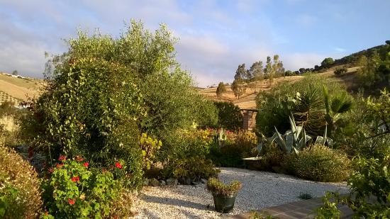 Cortijo Valverde: Gardens