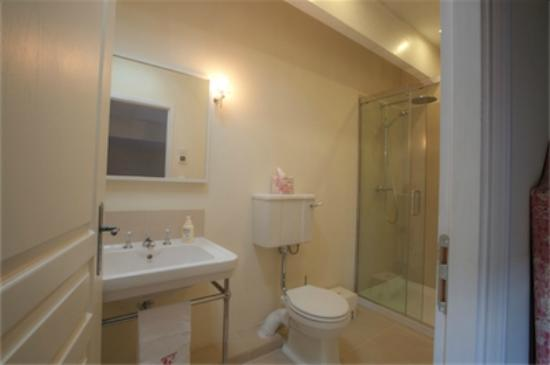 Saint-Vincent-de-Pertignas, France: Ensuite shower room for twin bedroom
