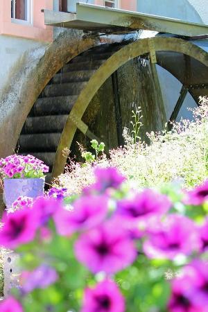 Densborner Wassermühle