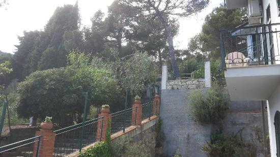 Residence Il Poggio di Andora: La pineta