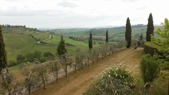 Agriturismo La Canonica: vista dalla camera