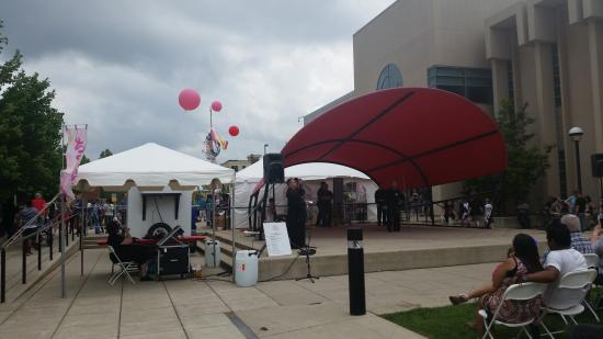 Allen County Public Library: Cherry Bloosom Festival