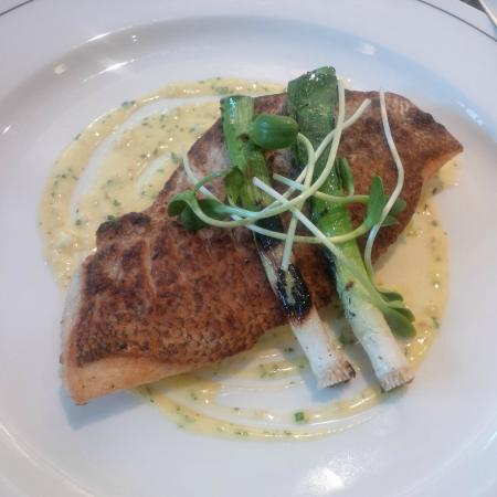 Pan roasted red snapper