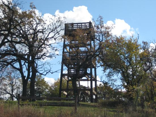 Lapham Peak: the tower lookout