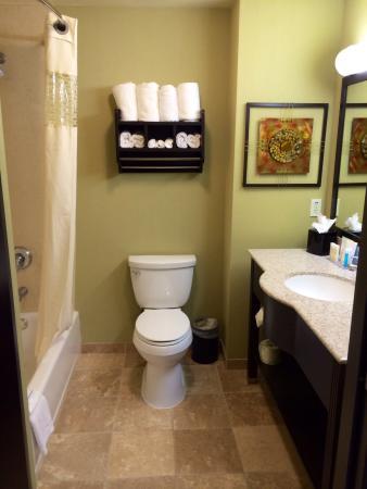 Hampton Inn and Suites Roseville: Nice bathroom