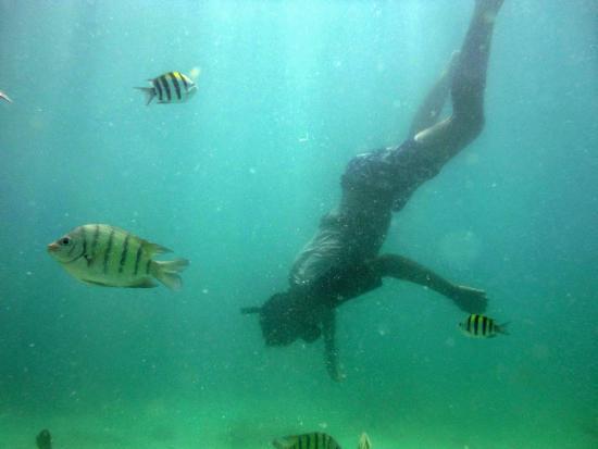 Seawalking: 2