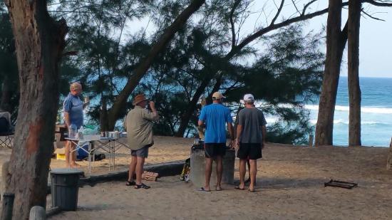 Cape Vidal Camp: Barbeque in communial area