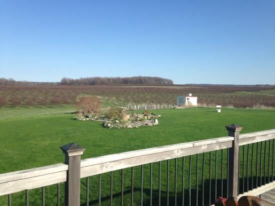 Country Hermitage Bed and Breakfast Traverse City: View looking off the grand deck of the B&B