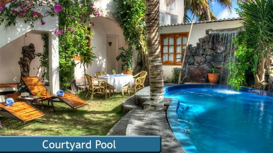 Hotel Albemarle: Courtyard Pool