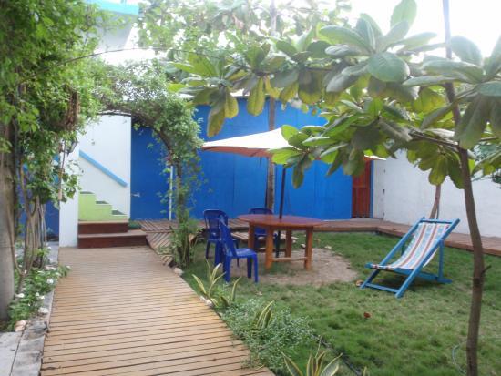 Hostal Loja: jardín frente a la habitación