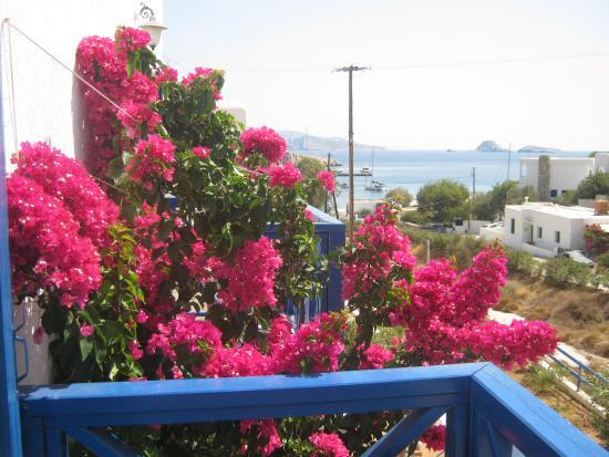 Aegean Star Hotel Apartments: fantastic.....