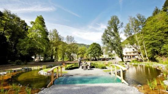 Bad Bertrich, Germany: Landschaftstherapeutischer Park Römerkessel