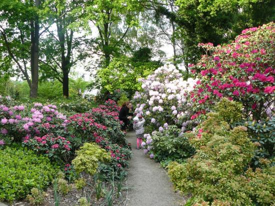 ... и креслами - Picture of Garten der Welt, Berlin - TripAdvisor