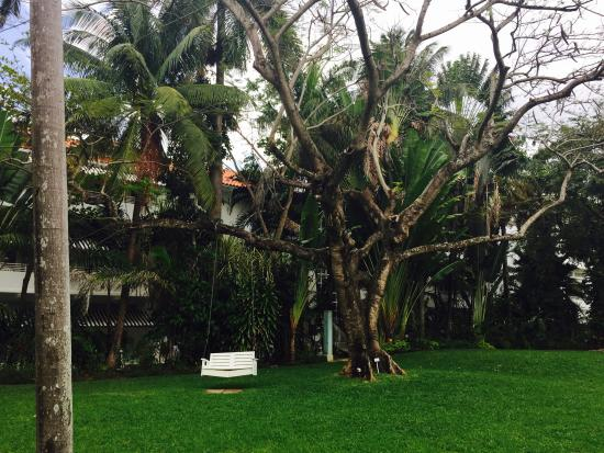 Couples Tower Isle: Lawn area of resort