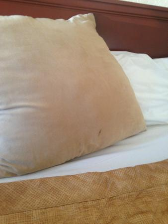Niagara Lodge & Suites: Stains on the pillow