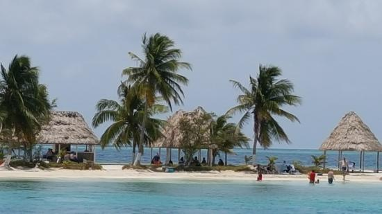 Such A Relaxing Place Picture Of Snorkeling Wonders Of The Barrier Reef By Belize City