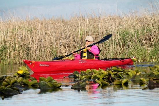 Rocky Point Resort: Kayaking/canoe trail