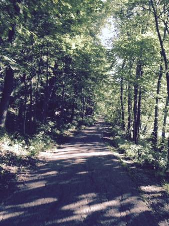 Sharon Woods: Trail Run