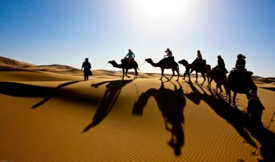 Your Ticket To Morocco - Day Tours