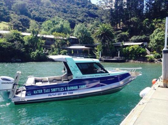 Water taxi Waihi at Kingfish Lodge