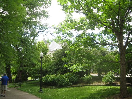 Central Park: Walkways and greenery