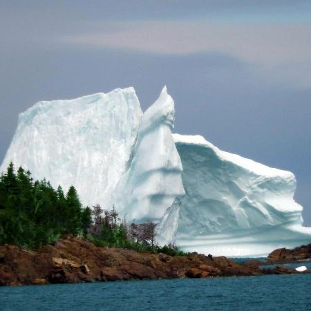 Anchor Inn Hotel: Iceberg