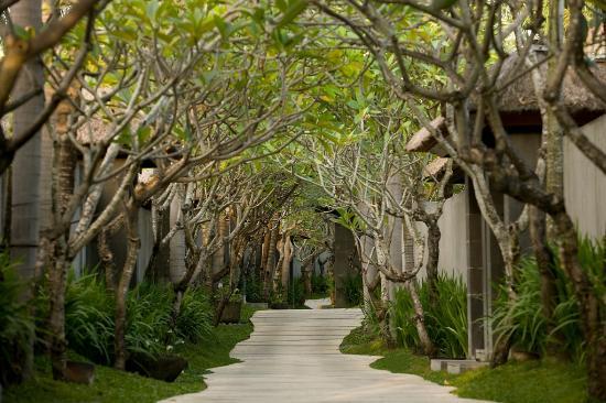 The Kayana Bali: Pathway