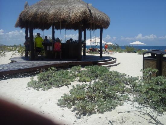Secrets Playa Mujeres Golf & Spa Resort: Bar Barracuda
