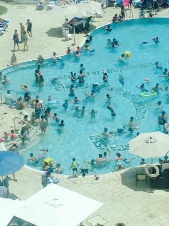 Daniel Dead Sea Hotel: בריכת השחיה קטנה מלהכיל את הספר האורחים במלון