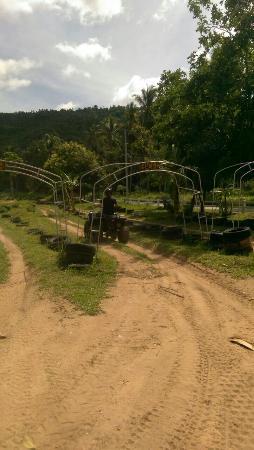 Samui Namuang ATV Park: Practice field