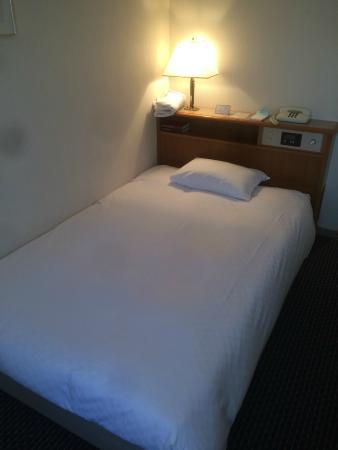 Pearl Hotel Mizonokuchi: Single Room