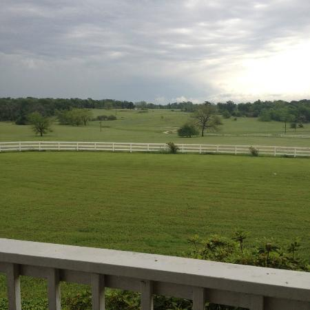 Lillian Farms Country Estate: The stunning view from the porch!