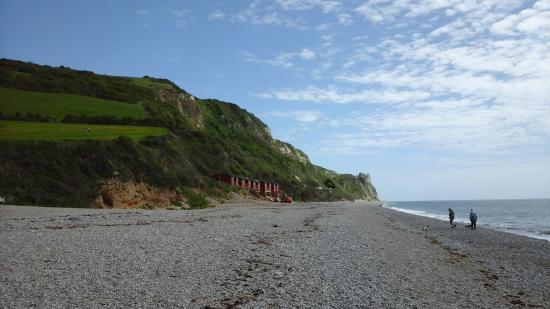 Бранскомб, UK: beach to left side facing the sea