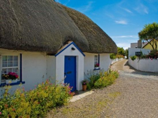 Silver Fox Seafood Restaurant: thatch cottage in the kilmore quay