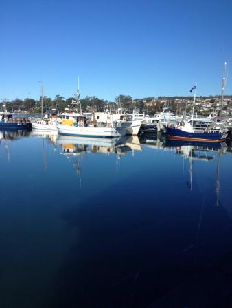St Helens, Avustralya: photo3.jpg