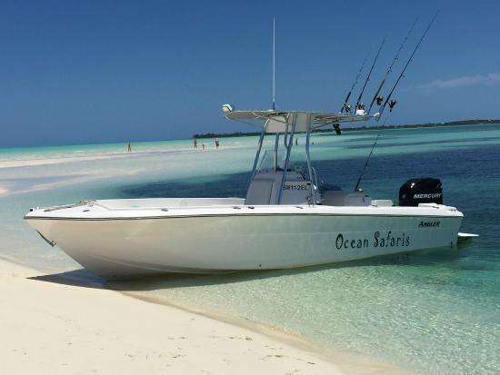 Bahamas Ocean Safaris