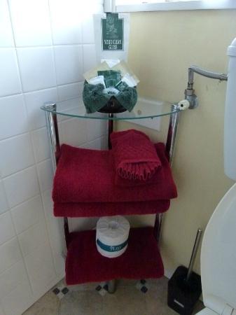 Grange Motor Lodge: bathroom amenities