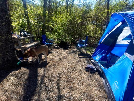 Hadley's Point Campground Resmi