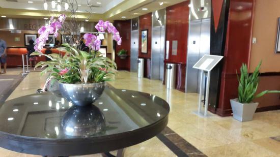 Radisson Hotel Rochester Airport: Recepção