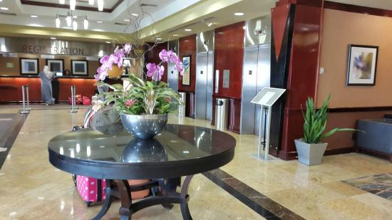 Radisson Hotel Rochester Airport : Recepção